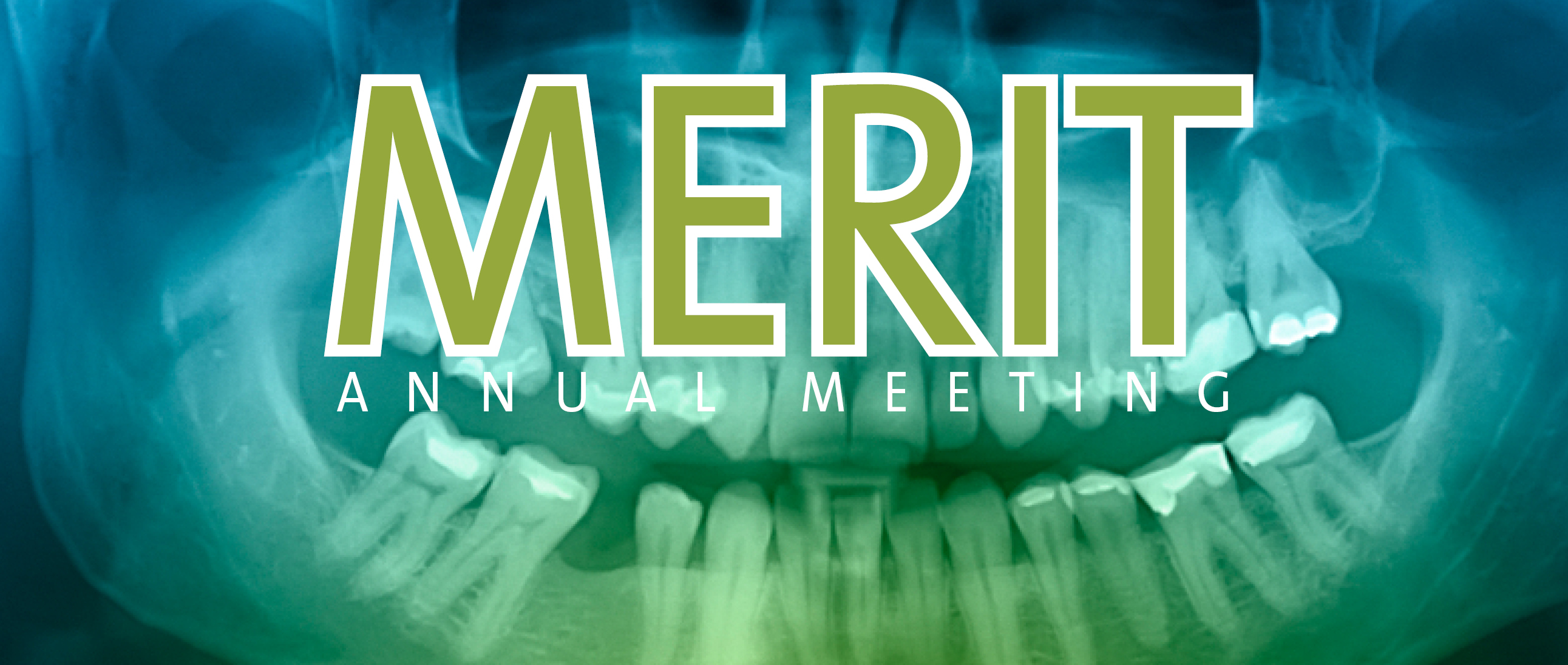 MERIT Annual Meeting banner